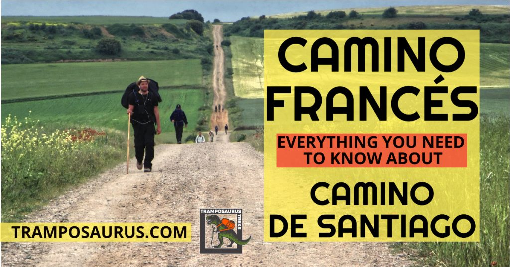 Everything You Need to Know About Camino Frances
