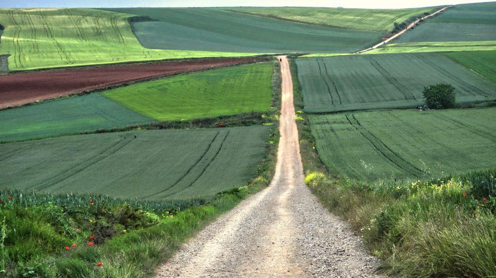 the long road of the camino de santiago
