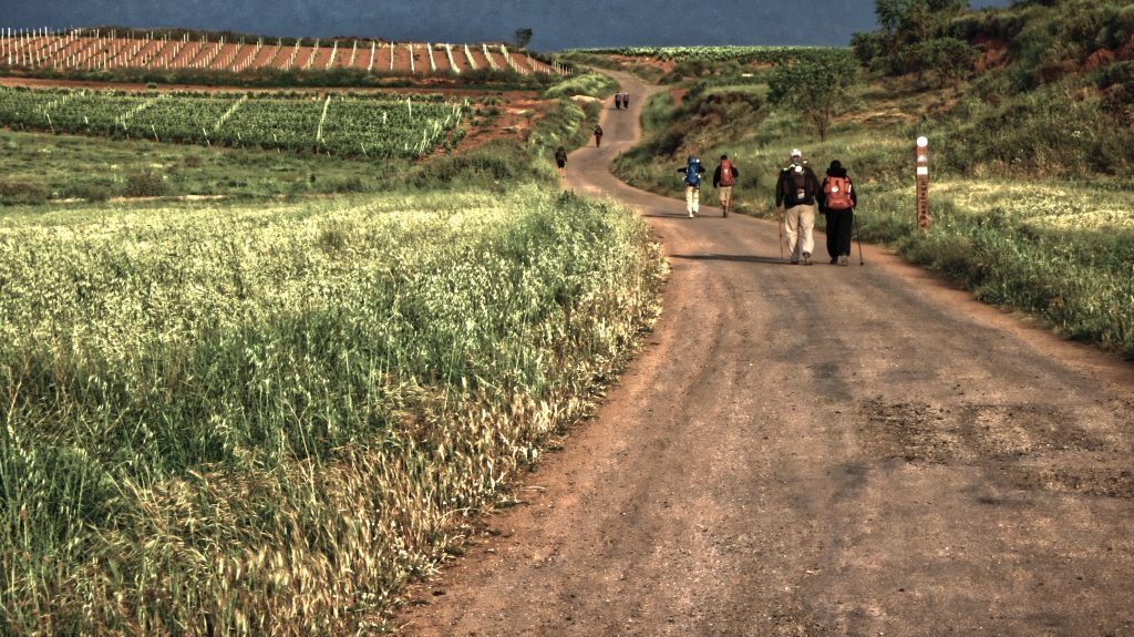 Long and winding road of the camino de santiago