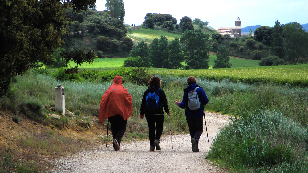 walking and talking on the camino de santiago