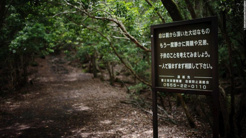 Haunted-Hikes-Japan-Suicide-Forest