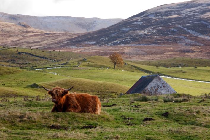 Cateran Trail Scotland 01