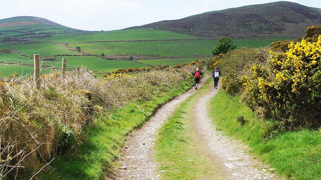 Dingle Way Ireland 06