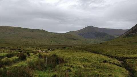 Keenagh Loop Walk Ireland 01