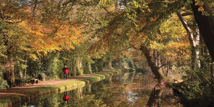 Monmouthshire and Brecon Canals 04