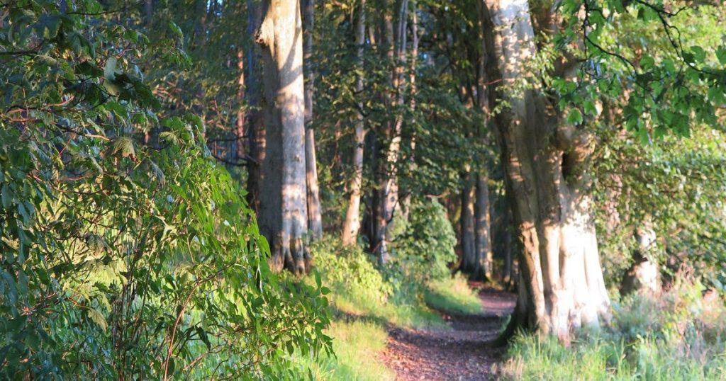 Moray Coast Trail Scotland 06