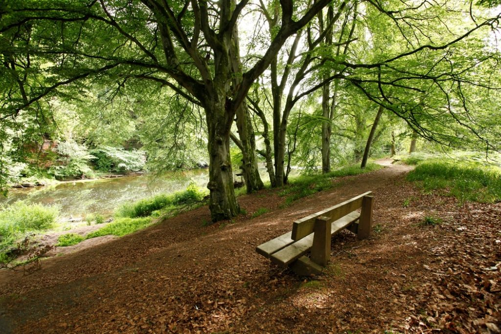 River Ayr Way Scotland 01