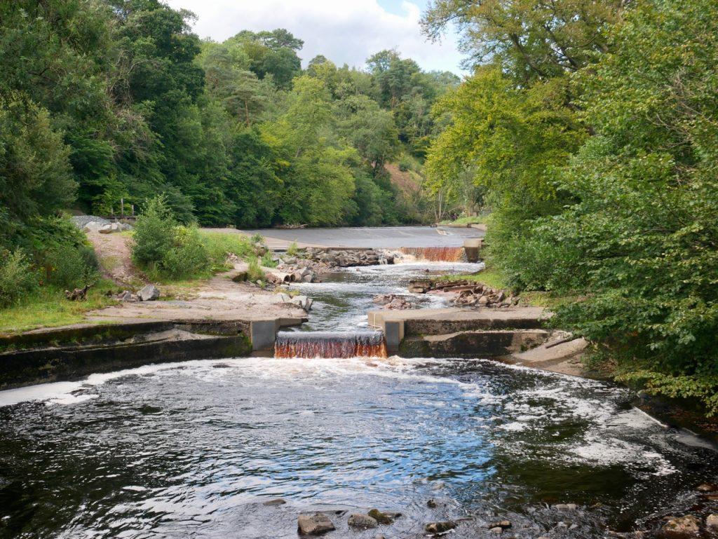 River Ayr Way Scotland 04