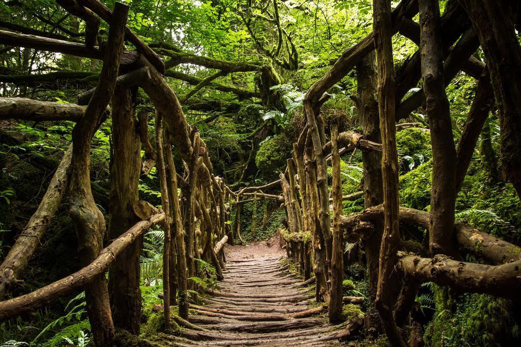 Wye-Valley-Walk-Bridge
