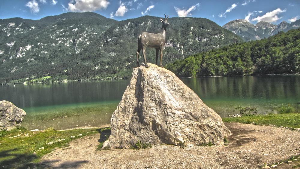 Lake Bohinj - Ram on Rock