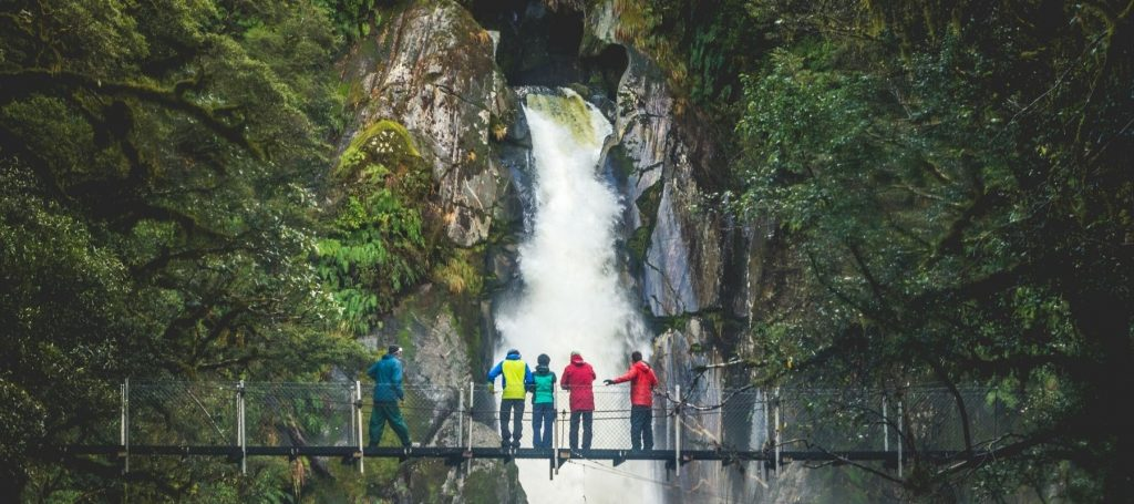 Milford Track - New Zealand - Suspension Bridge