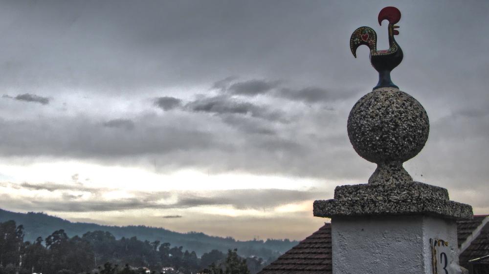 Barcelos Cockrel Landscape
