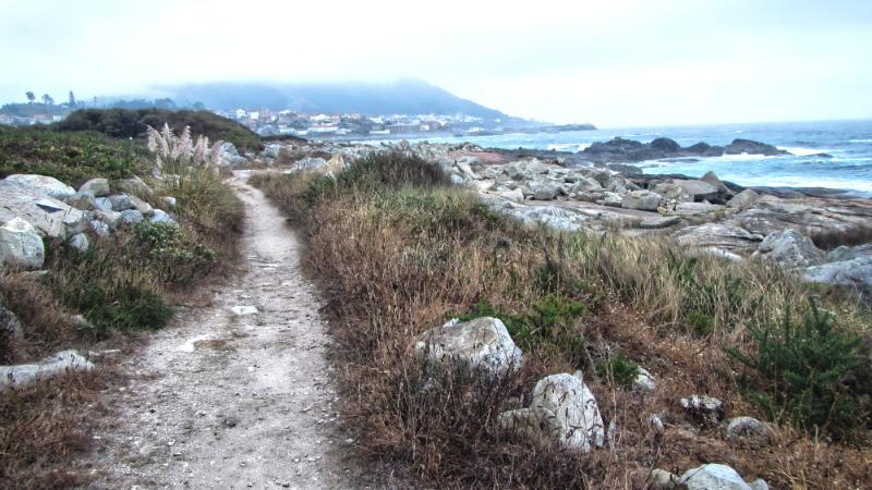 Camino Portuguese Coastal Route - Beach Walk 02